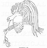 Paradise Bird Coloring Pages Resting Branch Historical Vector Outlined Version Illustration Al Picsburg Template Getdrawings Sketch sketch template