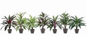 Künstliche Pflanzen Wie Echt : kunstpflanzen wie echt kunstgr ser k nstliche orchideen ~ Michelbontemps.com Haus und Dekorationen