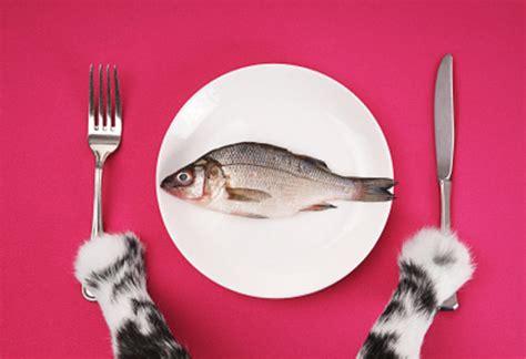 read cat food label choosing  cat food
