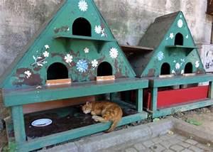 Cabane Pour Chat Exterieur Pas Cher : coup de coeur abris pour chats errants cabanes de jardin outdoor cat shelter feral cat ~ Farleysfitness.com Idées de Décoration