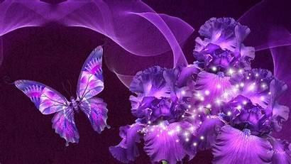 Purple Butterfly Flowers Sparkles Near Wallpapers