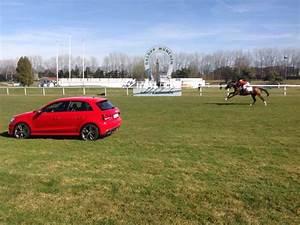 Lignon Automobile : lignon s hero gegen 231 ps duell pferd vs auto news galopprennbahn m nchen riem ~ Gottalentnigeria.com Avis de Voitures