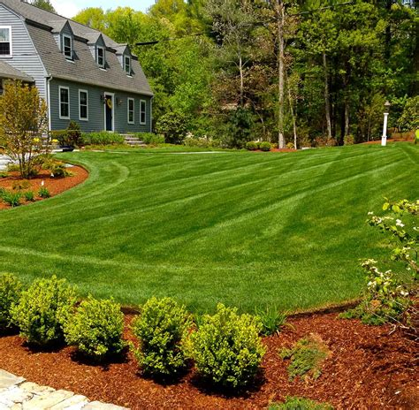 what is landscape design landscaping company landscaper walpole dover norfolk medfield ma
