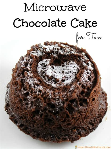 microwave chocolate cake for two inspiration laboratories