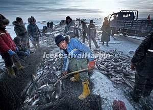 4-day Harbin Ice Festival & Chagan Lake Winter Fishing ...