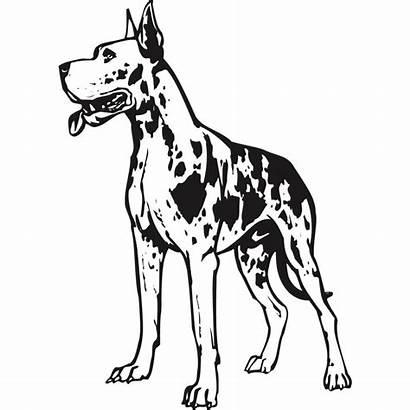 Dane Drawing Sticker Decal Dog Stickers Murah