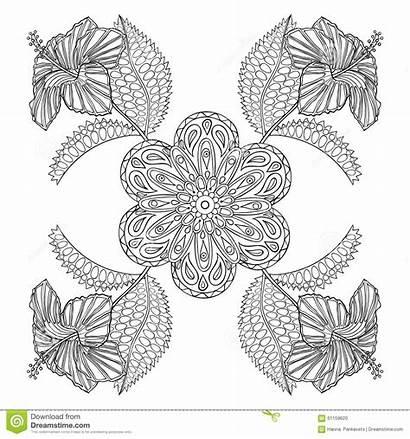Coloring Zentangle Fiori Exotic Illustartion Adult Pagina