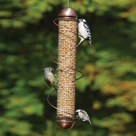 songbird essentials sebqsbf4 peanut bird feeder atg stores