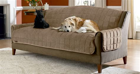 pet friendly slipcovers for sofas sure fit slipcovers august 2011