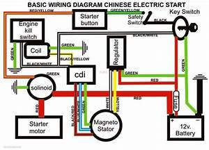 Yerf Dog Scout Wiring Diagram