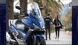 Concessionnaire Yamaha Marseille : miami bike marseille concessionnaire kymco et yamaha marseille 06 13006 ~ Medecine-chirurgie-esthetiques.com Avis de Voitures