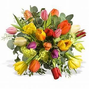 Blumenstrau Frhlingserwachen Fleurop Blumen