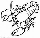 Coloring Lobster Animals Printable Sea Template Templates sketch template