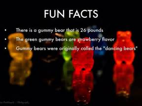 Fun Facts About Bears Best Bear 2017