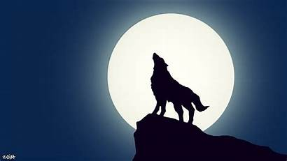Wolf Simple Wallpapers Animated Wallpaperplay Walls