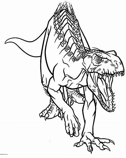 Coloring Indoraptor Colorear Dinosaurios Imprimir Dibujo Indominus