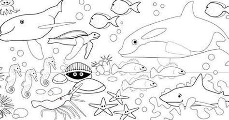 Contohnya saja seperti mewarnai sketsa gambar hewan, mewarnai sketsa gambar pesawat, mewarnai sketsa pemandangan dan masih banyak lagi. Kumpulan Sketsa Gambar Mewarnai Binatang Laut Untuk Anak ...