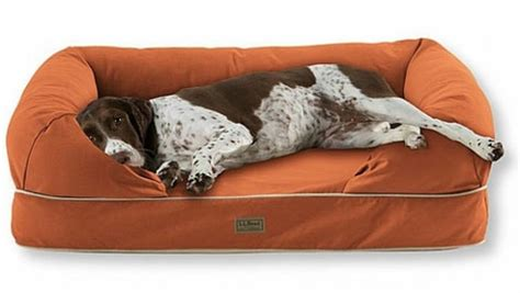 5 durable dog beds for man s best friend from ll bean
