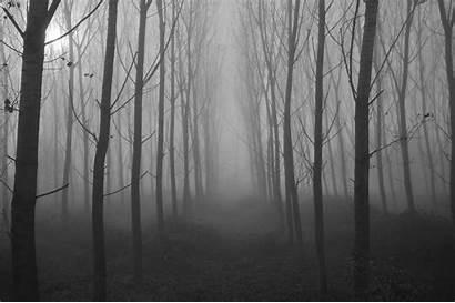 Spooky Landscape Nature Scary Backgrounds Wallpapers Desktop