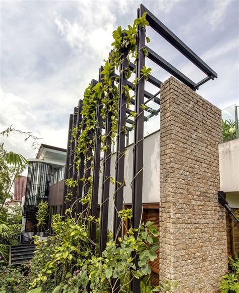 gorgeous vertical garden house  aamer architects