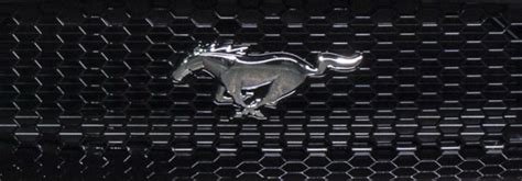 Watch Now 2019 Ford Mustang Shelby Gt500 Unveiling