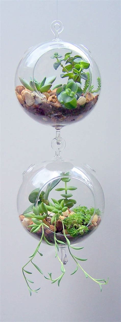 invite nature in with 31 indoor plant ideas