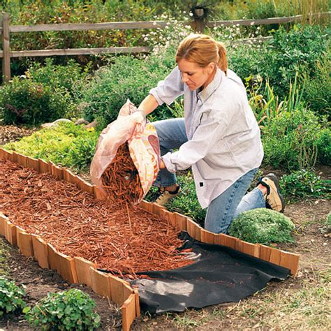 create  bark chip path   garden