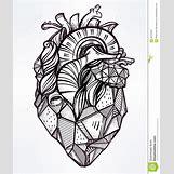 Anatomical Heart Tattoo Black And White | 1090 x 1300 jpeg 219kB