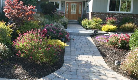 landscaping photos arreola landscaping