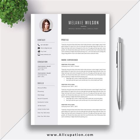 Sle Resume Template by Resume Template Word Format Modern Cv Template