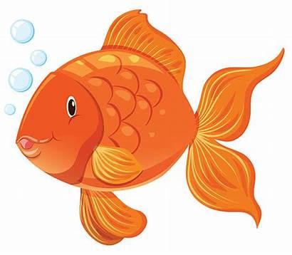 Goldfish Face Happy Vector Illustration Clip Graphic
