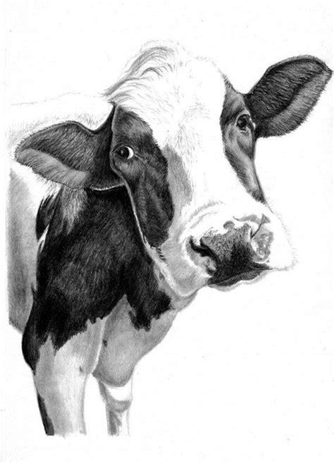 art print hand drawn animal pencil drawing