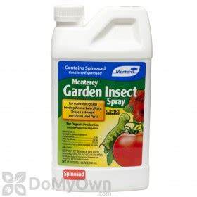 what is the most effective spray for moths
