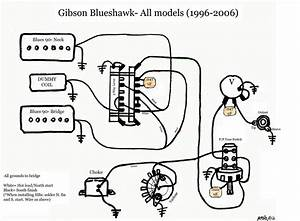 Gibson Blueshawk Diagram Schematic Bw