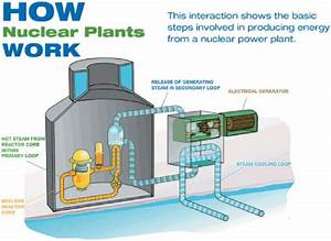 2 Basic Schematic Of Nuclear Power Plants And Steam Loops