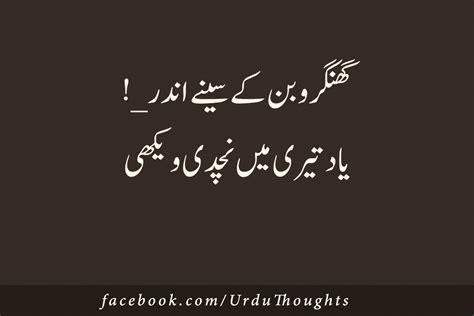 punjabi poetry  images urdu thoughts