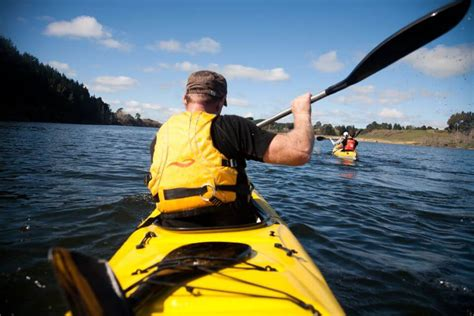 The Boat Shed New Zealand by The Boatshed Kayaks Cambridge New Zealand