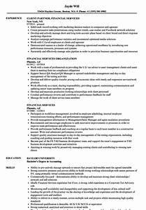 financial services resume samples velvet jobs With financial services resume writer