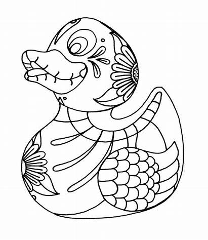 Coloring Pages Skull Sugar Crazy Designs Newdesignfile