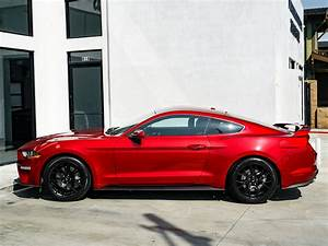 2019 Ford Mustang EcoBoost Stock # 6901A for sale near ...