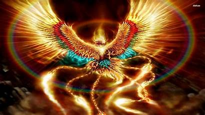 Phoenix Bird Wallpapers Desktop Laptop Wallpapertag