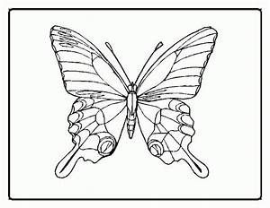 Coloring Pictures Of Flowers And Butterflies - Coloring Home