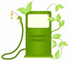 The Argument on Biofuels – Ranger Sam – Medium