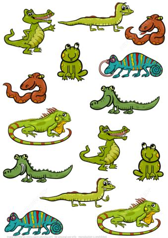 find 2 the same pictures of reptiles puzzle free