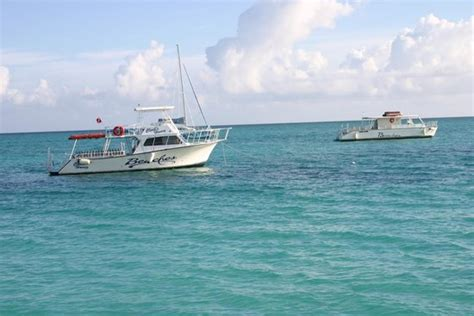 Newton 46 Dive Boat by View From The Dock Picture Of Beaches Turks