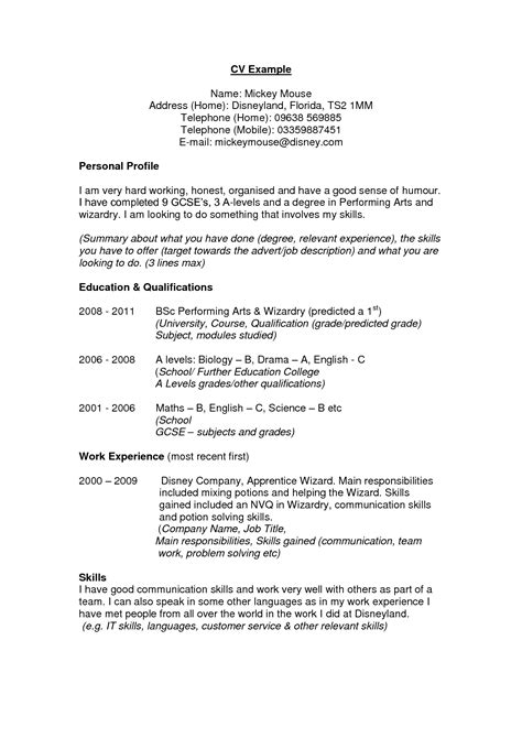 Profile Summary In Resume For Freshers by Inspirational Gallery Of Resume Summary Exles