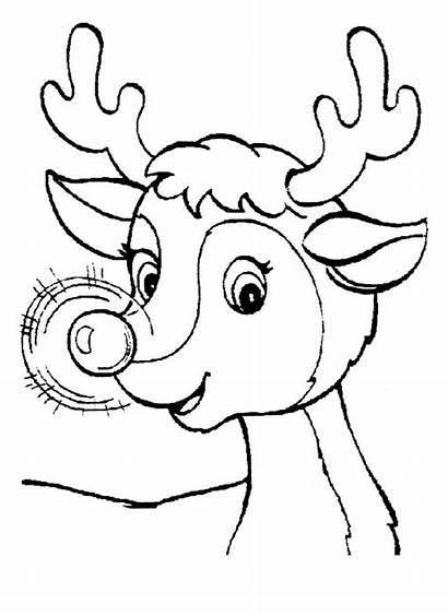 Coloring Pages Rudolph Calendariu Via K5worksheets K5