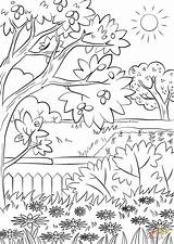 Coloring Garden Pages Summer Nature Printable Print sketch template