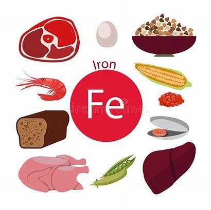 Iron Organische Organici Hohen Nahrungsmittel Satz Einem