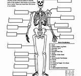 Skeleton Jack Coloring Pages Key Daniels Vector Frost Label Printable Getdrawings Elsa Getcolorings sketch template